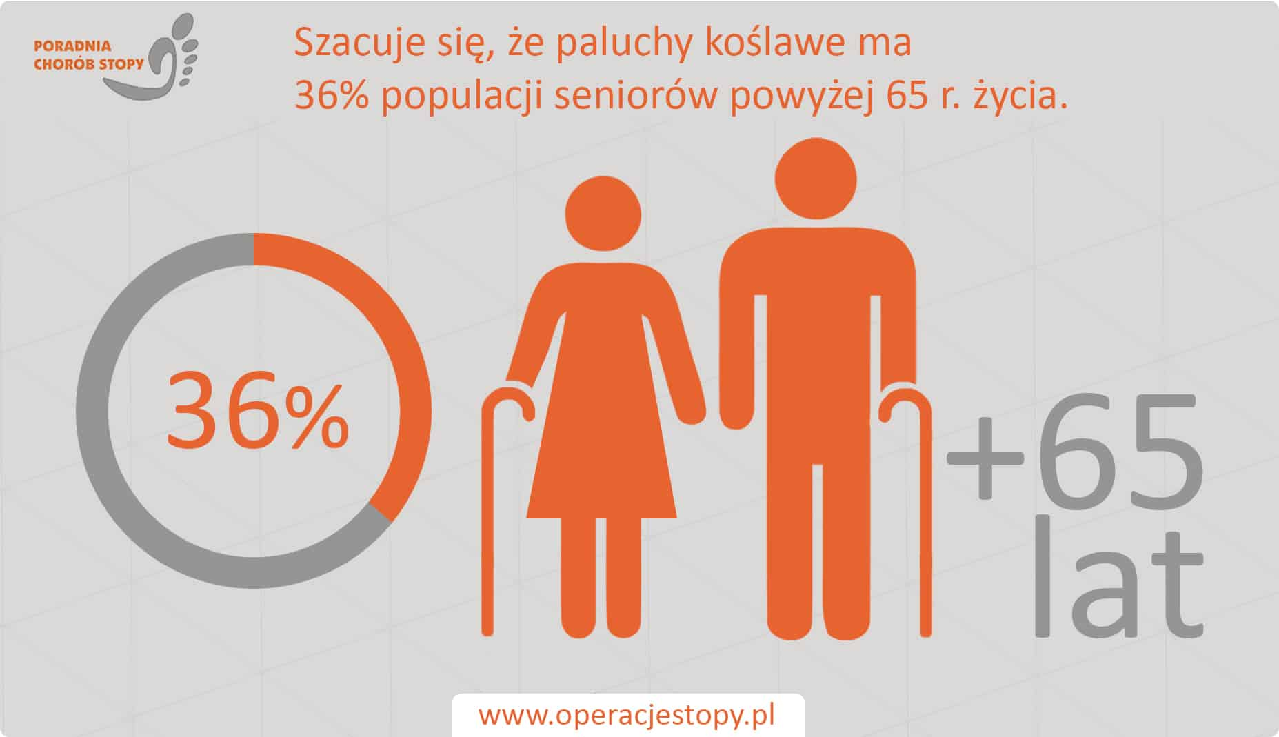 Operacjestopy.pl Paluch Koślawy